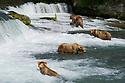 July 17 thru 23 / Alaska / Vacation and stock photography / Photo by Bob Laramie