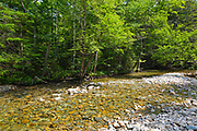 Franconia Brook in the Pemigewasset Wilderness of the White Mountain National Forest in New Hampshire USA during the summer months.