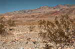Red Wall Canyon, Death Valley