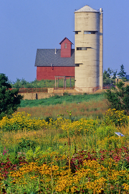 At the Peck Farm prairie restoration in Geneva, Kane County, Illinois, an old concrete silo has been turned into an observation tower and is surrounded by prairie flowers and grasses.
