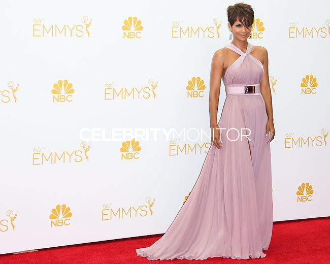 LOS ANGELES, CA, USA - AUGUST 25: Actress Halle Berry poses in the press room at the 66th Annual Primetime Emmy Awards held at Nokia Theatre L.A. Live on August 25, 2014 in Los Angeles, California, United States. (Photo by Celebrity Monitor)