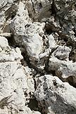 EXUMA, Bahamas. Detail of rocks on Compass Cay.