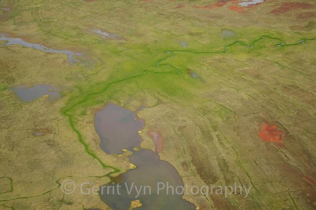 Aerial view of a tundra stream and pond south of Teshekpuk Lake. Arctic Coastal Plain Alaska. July.