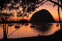 Sunset's golden light at the harbor of Morro Bay on the California Central Coast