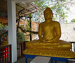 Large golden Buddha statue, Gangaramaya Buddhist Temple, Colombo, Sri Lanka, Asia