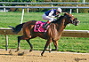 Dancing Lion winning at Delaware Park on 10/14/15<br /> Trevor McCarthy's 5th win of the Day!