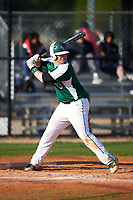 Farmingdale State Rams Christopher Reilly (33) at bat during the second game of a doubleheader against the FDU-Florham Devils on March 15, 2017 at Lake Myrtle Park in Auburndale, Florida.  FDU-Florham defeated Farmingdale 8-4.  (Mike Janes/Four Seam Images)
