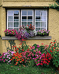 County Limerick, Ireland<br /> Shop window with flower boxes and gardens in the village of Adare