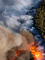Forest fire smoke and flames. East Peak fire near Walsenburg, Colorado. June 2013.   89342