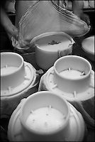 Europe/France/Aquitaine/64/Pyrénées-Atlantiques/Pays Basque/ Saint-Martin-d'Arberoue: Ferme Agerria  de Bernadette et Jean-Claude Pochelu - Préparation de l'AOC Ossau-Iraty -  Moulage du caillé