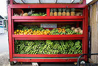 A well-stocked fruit stand in Hanalei, North Shore, Kaua'i.