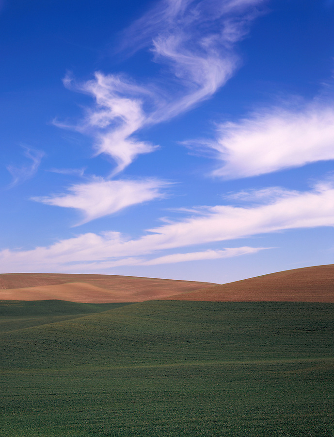 Feathery, wispy clouds float over a remote field in the Palouse area of Eastern Washington State.
