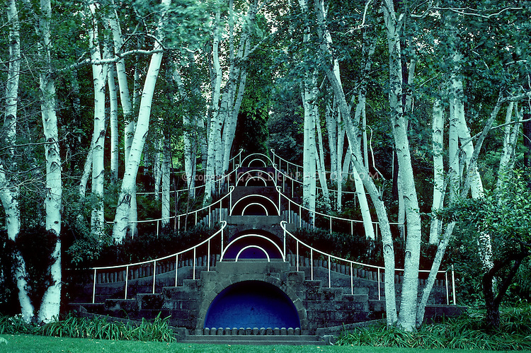 """""""Blue Steps"""" at Naumkeag, MA. Fletcher Steele's famous design within white Birches. Form and structure design of a garden"""
