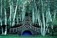 """Blue Steps"" at Naumkeag, MA. Fletcher Steele's famous design within white Birches. Form and structure design of a garden, Betula utilis"