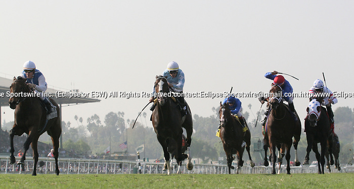 7 November 2009: Goldikova and jockey Olivier Pelsier win the Breeders Cup Mile at Santa Anita Race Track in Arcadia, CA...
