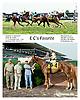 E C's Favorite winning at Delaware Park on 10/3/13