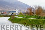 Ken Feeley runners at the Kerry's Eye Tralee, Tralee International Marathon and Half Marathon on Saturday.