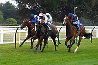 Winner of The Whiteparish Handicap  Amazon Princess ridden by George Rooke and trained by Tony Newcombe during Horse Racing at Salisbury Racecourse on 13th August 2020