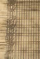 Spur: EUROPA, DEUTSCHLAND, SCHLESWIG- HOLSTEIN, (GERMANY), 06.09.2007: Fahrspur, eines Treckers auf einem Acker, ordentlich, Reihe, unordentlich, Chaos, Wende, Richtung, Saat, saehen, Herbst, Luftbild, Luftansicht, Aufwind-Luftbilder.. c o p y r i g h t : A U F W I N D - L U F T B I L D E R . de.G e r t r u d - B a e u m e r - S t i e g 1 0 2, 2 1 0 3 5 H a m b u r g , G e r m a n y P h o n e + 4 9 (0) 1 7 1 - 6 8 6 6 0 6 9 E m a i l H w e i 1 @ a o l . c o m w w w . a u f w i n d - l u f t b i l d e r . d e.K o n t o : P o s t b a n k H a m b u r g .B l z : 2 0 0 1 0 0 2 0  K o n t o : 5 8 3 6 5 7 2 0 9.C o p y r i g h t n u r f u e r j o u r n a l i s t i s c h Z w e c k e, keine P e r s o e n l i c h ke i t s r e c h t e v o r h a n d e n, V e r o e f f e n t l i c h u n g n u r m i t H o n o r a r n a c h M F M, N a m e n s n e n n u n g u n d B e l e g e x e m p l a r !.