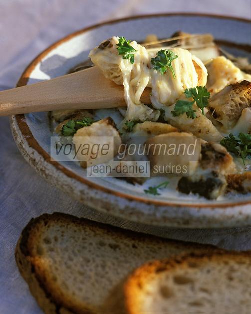 """Europe/France/Auvergne/15/Cantal/Paulhac: La patranque - Recette de François Rongier du """"Relais des Gourmets"""""""