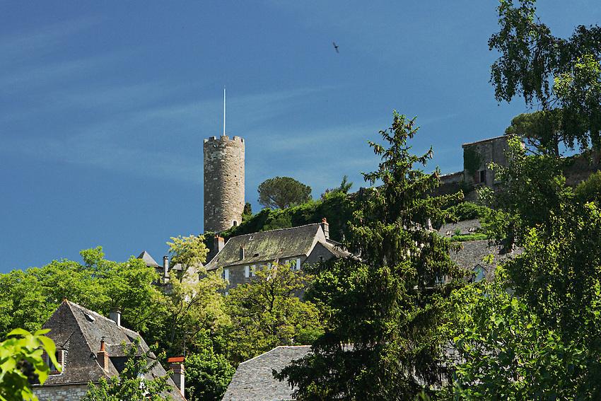 La tour ronde du nord du chateau de Turenne.