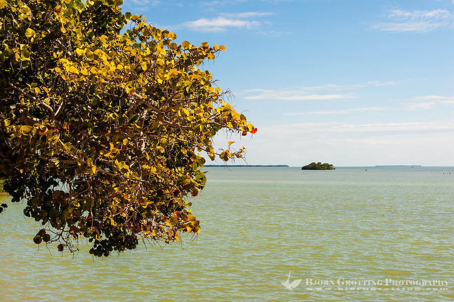 US, Florida, Everglades. The small town of Flamingo.