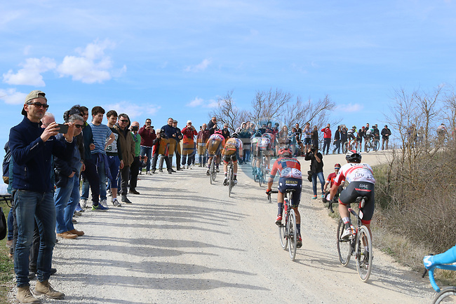 The peloton climb sector 8 Monte Santa Maria during Strade Bianche 2019 running 184km from Siena to Siena, held over the white gravel roads of Tuscany, Italy. 9th March 2019.<br /> Picture: Seamus Yore   Cyclefile<br /> <br /> <br /> All photos usage must carry mandatory copyright credit (© Cyclefile   Seamus Yore)