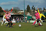 01/04/2013 - AFC Hornchurch V Bromley - Blue Square Conference South - The Stadium