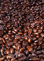 Coffee beans close-up.