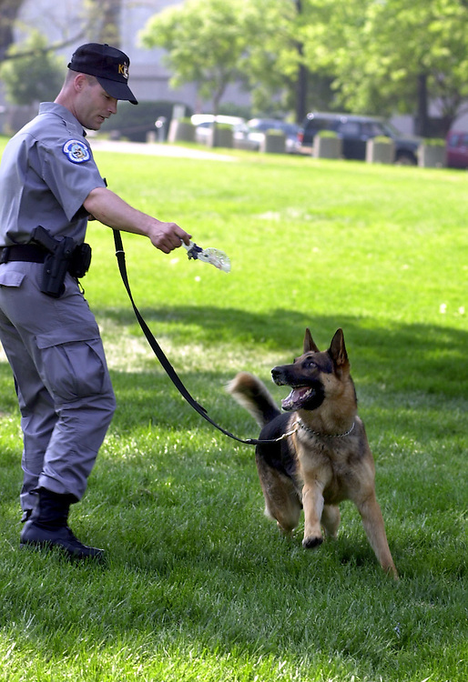 "2dog050201-- Technician Ron Potter palys with Capitol Police Dog ""SanDokan"" on the West Front of the Capitol, Wednesday."