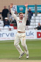 Simon Harmer of Essex with an appeal for the wicket of Paul Stirling during Essex CCC vs Middlesex CCC, Specsavers County Championship Division 1 Cricket at The Cloudfm County Ground on 29th June 2017