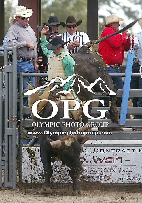 28 August 2005: Brian Welsh riding the bull Dirt Devil holds on during the Extreme Bulls competition Sunday at the Kitsap County Fair Grounds, Welsh was not able to hold on during the first round of  competition in Bremerton, WA.