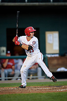 Harrisburg Senators third baseman Jake Noll (13) at bat during a game against the Erie SeaWolves on August 29, 2018 at FNB Field in Harrisburg, Pennsylvania.  Harrisburg defeated Erie 5-4.  (Mike Janes/Four Seam Images)