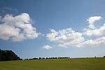 White fluffy cumulus clouds over field of turf grass, Sutton, Suffolk, England