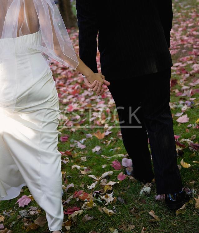USA, Illinois, Metamora, Bride and groom holding hands
