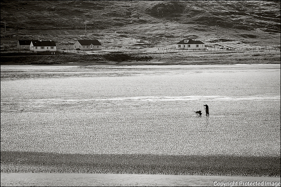 Isle of Lewis and Harris, Scotland: Clammer working the low tide on Luskentyre beach, South Harris Island