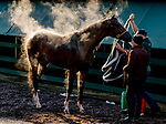 May 15, 2019 : Market King gets a bath after exercising as horses prepare for Preakness Week at Pimlico Race Course in Baltimore, Maryland. Scott Serio/Eclipse Sportswire/CSM