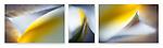 Close-up photographic triptych of light blue iris flowers.
