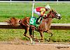 Frynzy winning at Delaware Park on 7/24/13