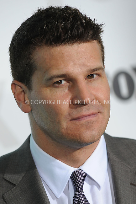 WWW.ACEPIXS.COM . . . . . .May 14, 2012...New York City....David Boreanaz  attending the 2012 FOX Upfront Presentation in Central Park on May 14, 2012  in New York City ....Please byline: KRISTIN CALLAHAN - ACEPIXS.COM.. . . . . . ..Ace Pictures, Inc: ..tel: (212) 243 8787 or (646) 769 0430..e-mail: info@acepixs.com..web: http://www.acepixs.com .