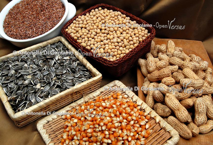 Semi di girasole, mais, soia, arachidi, lino..Seed of sunflower, corn, soybean, peanut, flax..  .