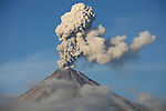 Ash cloud rising from summit crater of Colima Volcano following explosive eruption, Mexico.