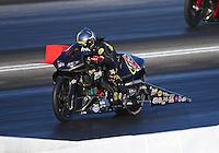 May 13, 2016; Commerce, GA, USA; NHRA pro stock motorcycle rider Angelle Sampey during qualifying for the Southern Nationals at Atlanta Dragway. Mandatory Credit: Mark J. Rebilas-USA TODAY Sports