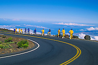 One of Maui's most popular activities for tourists is biking down 10,023-ft. Haleakala. Organized bike groups depart after sunrise at a 9,745-ft. elevation in Haleakala National Park and cruise down a steeply paved road.