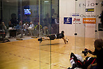 Kane Waselenchuk, the #1 International Racquetball Tour (IRT) player, dives for a shot against Shane Vanderson (R) in the quarter finals of the Cactus Salon NYC Pro/Am at Synergy Fitness North on January 13, 2012 in Syosset, NY.   Waselenchuk, who has a record-setting streak of undefeated games over the past 3 years, defeated Vanderson in three straight games, 11-5, 11-5, 11-3.  (Photograph by Michael Nagle)
