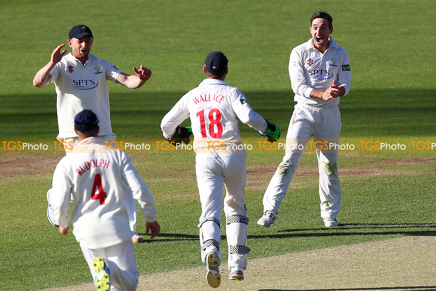 Andrew Salter (R) of Glamorgan celebrates taking the wicket of Jaik Mickleburgh - Glamorgan CCC vs Essex CCC - LV County Championship Division Two Cricket at the SWALEC Stadium, Sophia Gardens, Cardiff, Wales - 20/05/15 - MANDATORY CREDIT: TGSPHOTO - Self billing applies where appropriate - contact@tgsphoto.co.uk - NO UNPAID USE