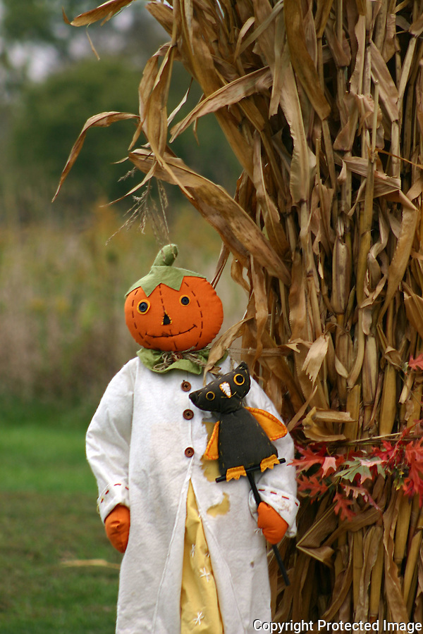 Halloween Scarecrow with Pumpkin Head