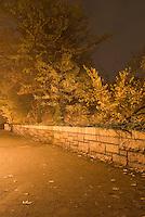 Path, Stone Wall, Trees and Shrubs Illuminated on an Autumn Night....Brooklyn Heights, Brooklyn, New York City, New York State, USA