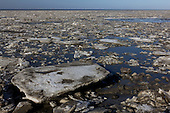 Kruiend ijs in Waddenzee bij Roptazijl