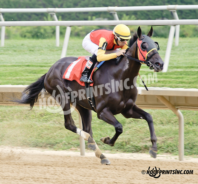 Negrito winning at Delaware Park on 8/9/14